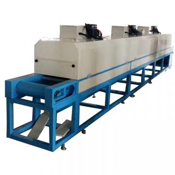 Multi-Layer Fruit and Vegetable Industrial Conveyor Dryer
